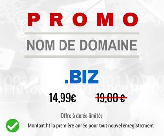 Promotion sur le nom de domaine .BIZ
