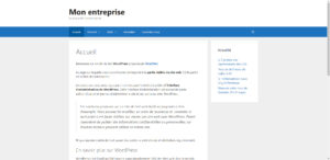 Page d'accueil WordPress en mode site web