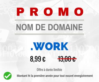 Promotion sur le nom de domaine .WORK