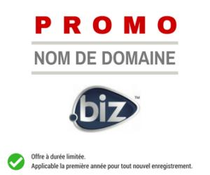 Promotion .BIZ