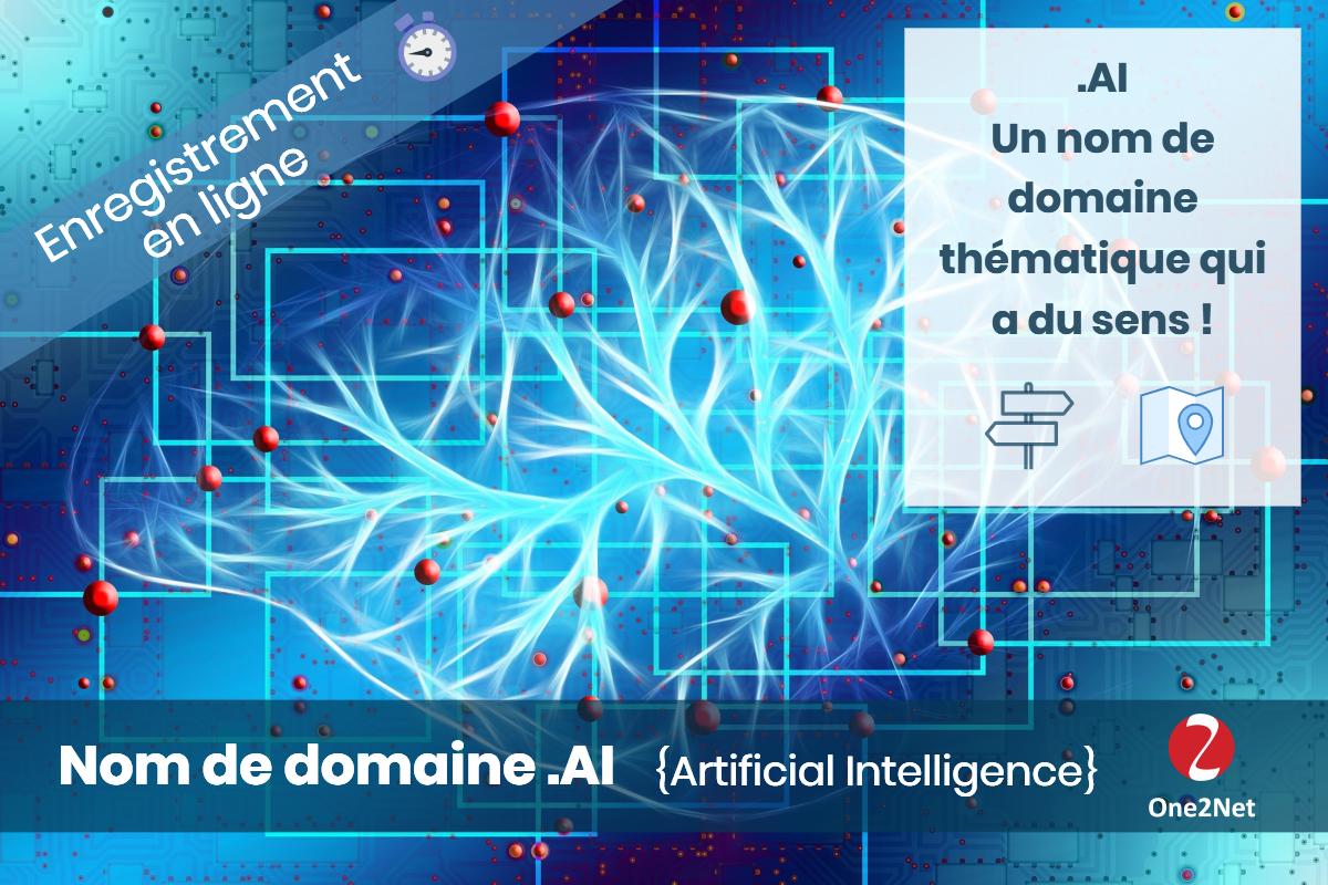 Nom de domaine .AI (Anguilla) - One2Net