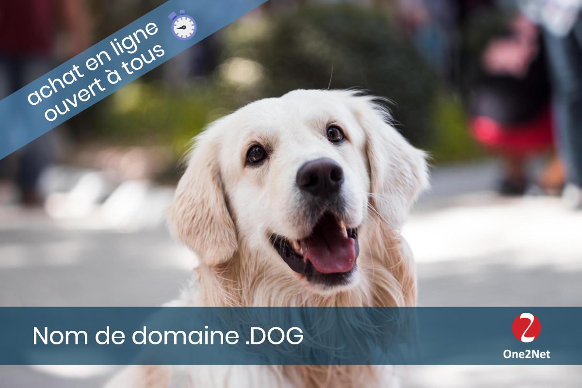 Nom de domaine .DOG - One2Net