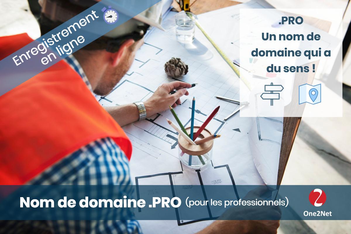 Nom de domaine .PRO (professionnels) - One2Net