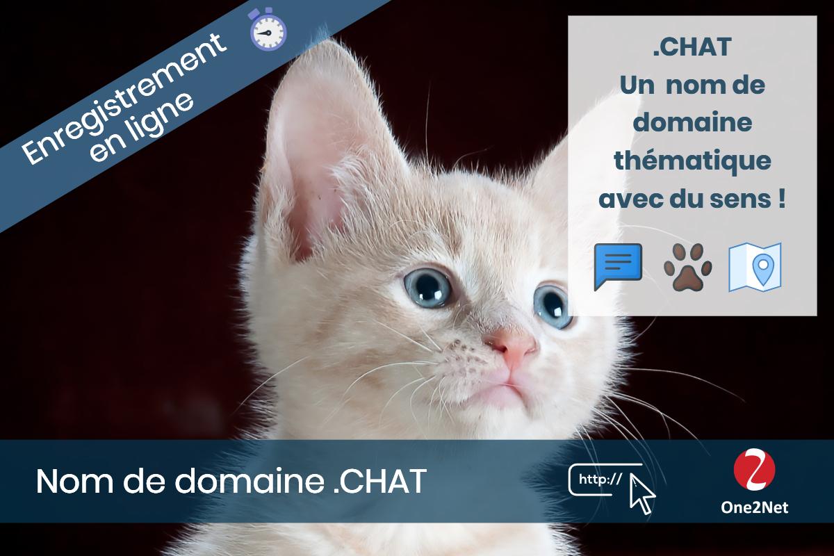 Nom de domaine .CHAT - One2Net