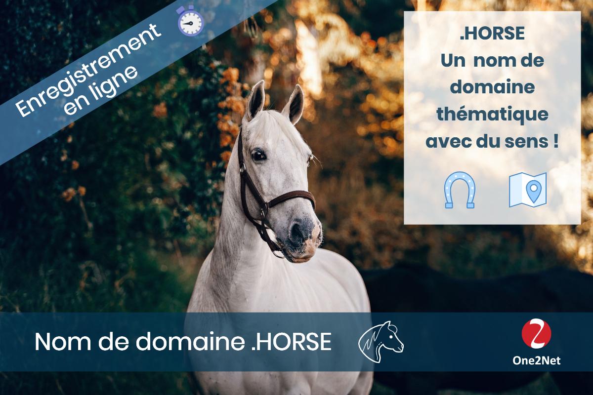 Nom de domaine .HORSE - One2Net