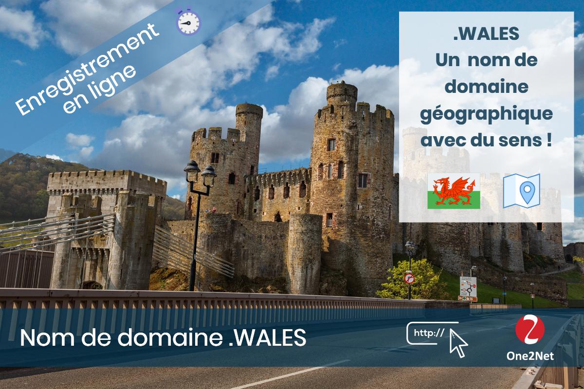 Nom de domaine .WALES (Pays de Galles), One2Net France