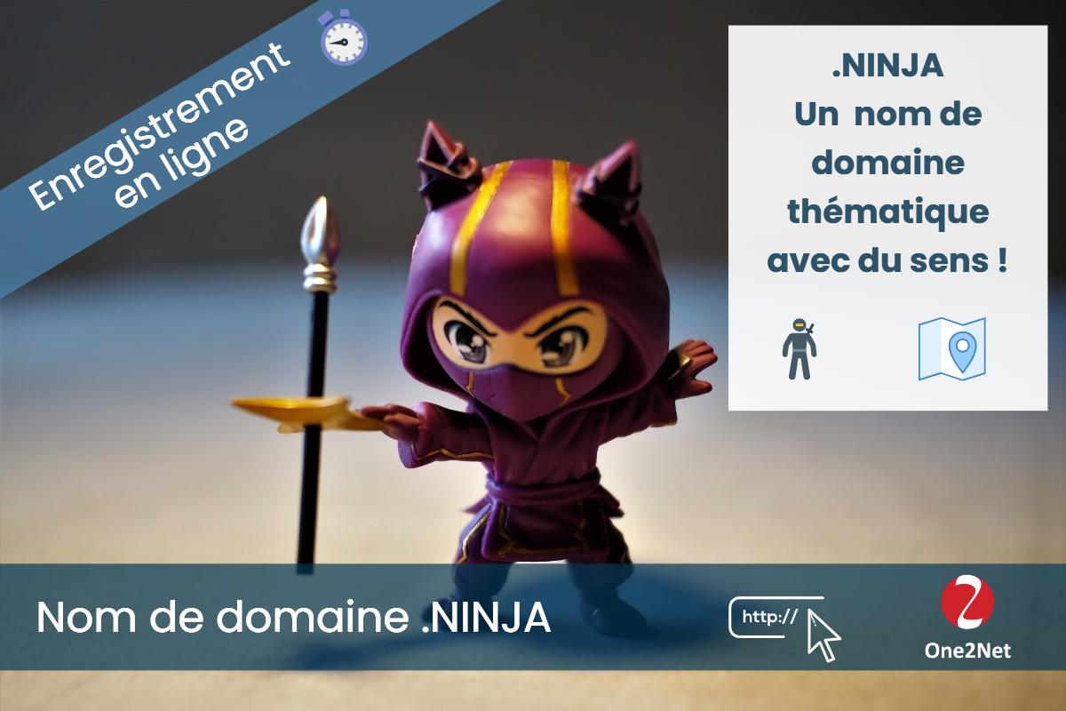 Nom de domaine .NINJA - One2Net
